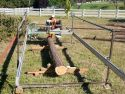 Sawmilling cedar in Salem 2016
